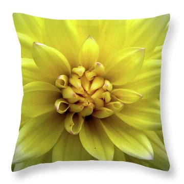 Yellow Dahlia Throw Pillow