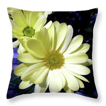 Throw Pillow featuring the photograph Yellow Daisies by Donna Brown
