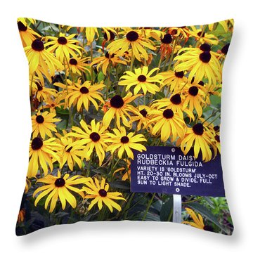 Yellow Daisies Throw Pillow by Ellen Tully