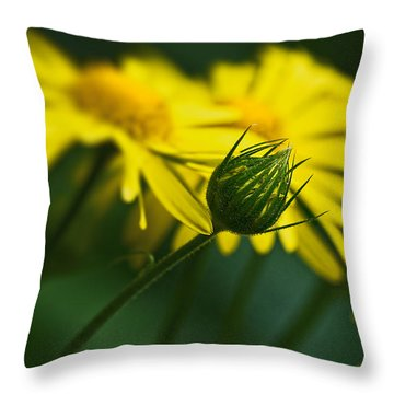 Yellow Daisy Bud Throw Pillow