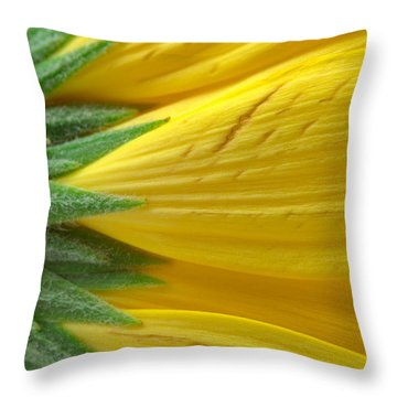 Yellow Daisy Macro Throw Pillow