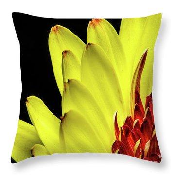 Yellow Daisy Peeking Throw Pillow