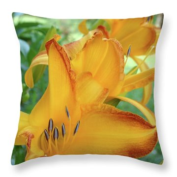 Yellow Daylily Throw Pillow by Rebecca Overton