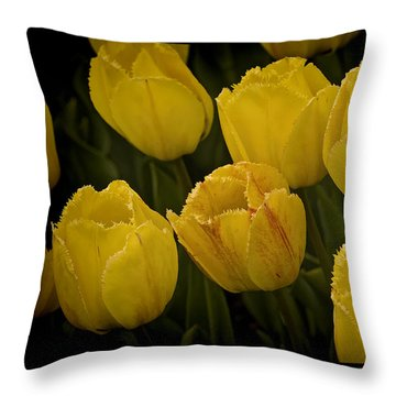 Yellow Detailed Tulip Throw Pillow by Michael Flood