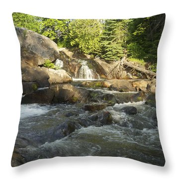 Yellow Dog 1 Throw Pillow by Michael Peychich