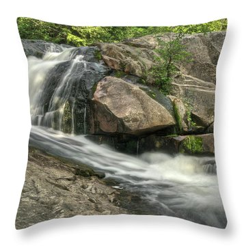 Yellow Dog Falls 4 Throw Pillow by Michael Peychich