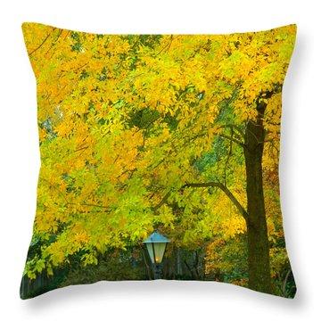Yellow Drapes Throw Pillow
