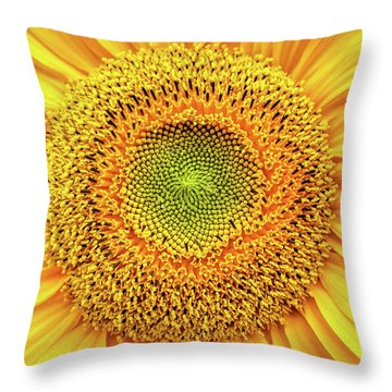 Yellow Eye Throw Pillow