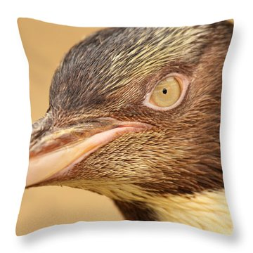 Throw Pillow featuring the photograph Yellow-eyed Penguin Peering In by Max Allen