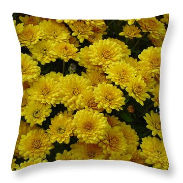 Yellow Fall Throw Pillow by Shirley Heyn