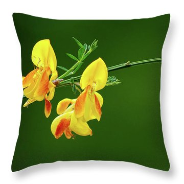 Yellow Fever Throw Pillow