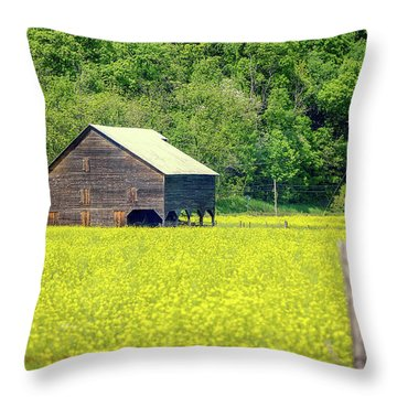 Yellow Field Rustic Shed Throw Pillow