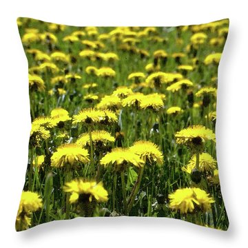 Yellow Field Two  Throw Pillow by Lyle Crump