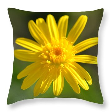 Throw Pillow featuring the photograph Yellow Fireworks by Michael Colgate