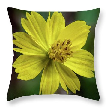 Throw Pillow featuring the photograph Yellow Flower by Ed Clark