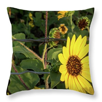 Yellow Flower Escaping From A Barb Wire Fence Throw Pillow