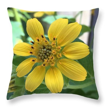 Yellow Flower Throw Pillow by Kay Gilley
