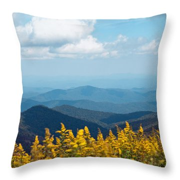 Throw Pillow featuring the photograph Yellow Flowers Along The Blue Ridge Mountains by Kim Fearheiley