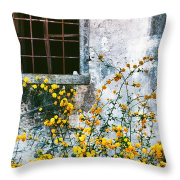 Throw Pillow featuring the photograph Yellow Flowers And Window by Silvia Ganora