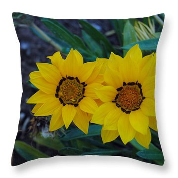 Gazania Rigens - Treasure Flower Throw Pillow