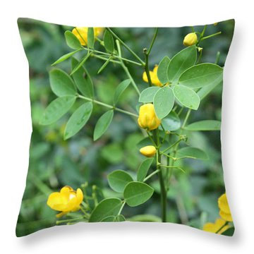 Throw Pillow featuring the photograph Yellow Flowers by Karen Nicholson