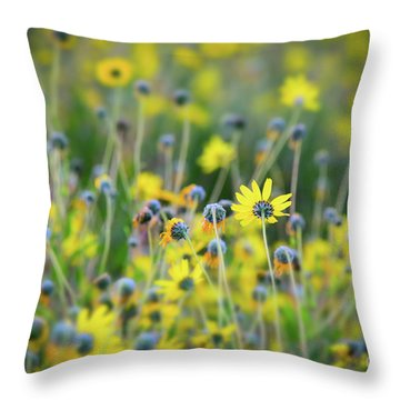Throw Pillow featuring the photograph Yellow Flowers by Kelly Wade