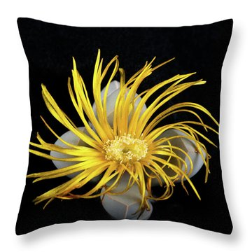 Yellow Follower  Throw Pillow by Catherine Lau