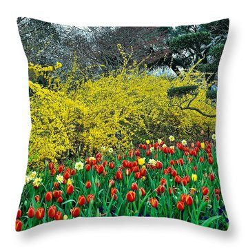 Throw Pillow featuring the photograph Yellow Forsythia by Diana Mary Sharpton