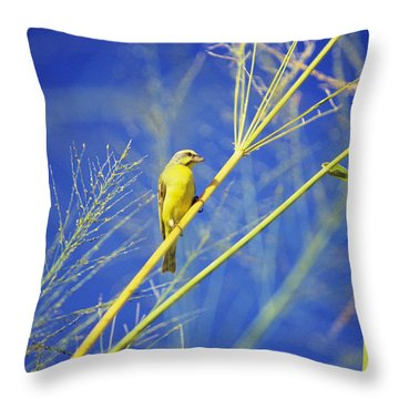 Yellow Fronted Canary Throw Pillow by Bob Abraham - Printscapes