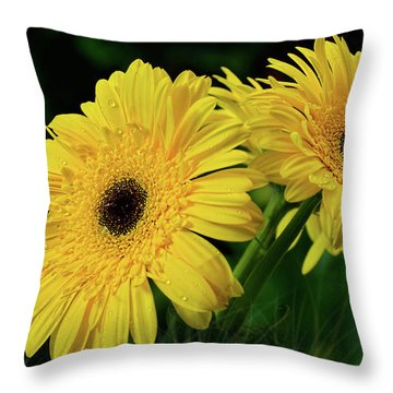 Throw Pillow featuring the photograph Yellow Gerbera Daisies By Kaye Menner by Kaye Menner