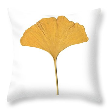 Yellow Ginkgo Leaf Throw Pillow by Renee Trenholm