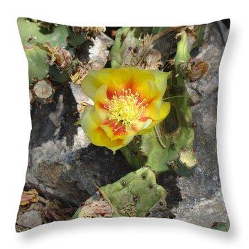 Yellow Cactus Flower Blossom Throw Pillow