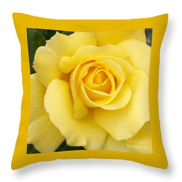 Throw Pillow featuring the photograph Yellow Gold by Sandy Molinaro
