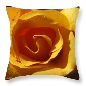 Yellow Gold Swirl - Rose Macro Throw Pillow