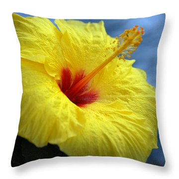 Throw Pillow featuring the photograph Yellow Hibiscus by Debbie Karnes