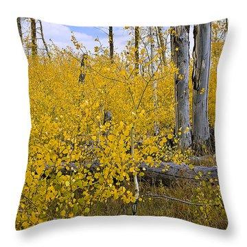 Throw Pillow featuring the photograph Yellow In Grand Teton by Ken Barrett