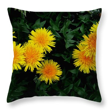 Yellow In Green Throw Pillow