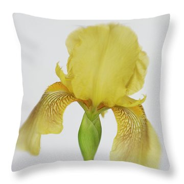 Throw Pillow featuring the photograph Yellow Iris A Symbol Of Passion by David and Carol Kelly