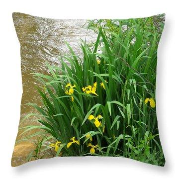 Yellow Iris Throw Pillow by Anna Villarreal Garbis