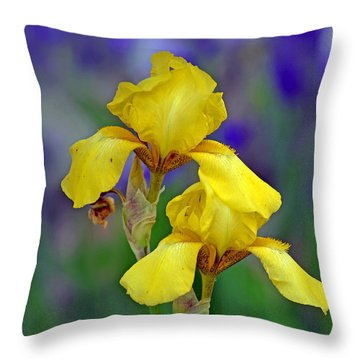 Throw Pillow featuring the photograph Yellow Iris by Rodney Campbell