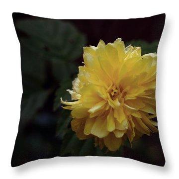 Yellow Throw Pillow by Keith Elliott