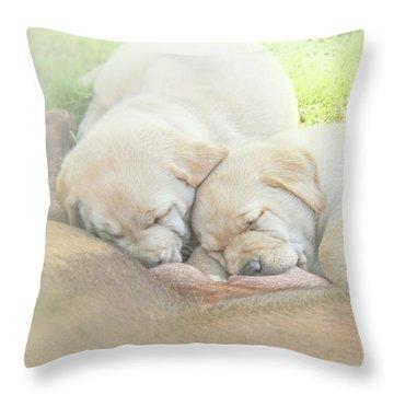 Throw Pillow featuring the photograph Yellow Labrador Retriever Puppies Nursing by Jennie Marie Schell