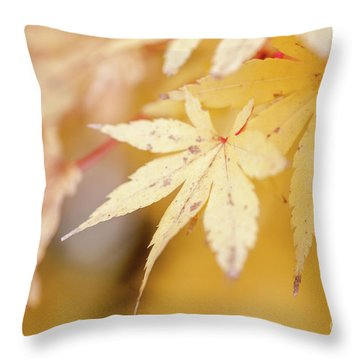Yellow Leaf With Red Veins Throw Pillow