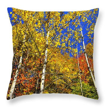 Yellow Leaves Blue Sky Throw Pillow
