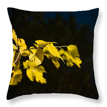 Throw Pillow featuring the photograph Yellow Leaves by Randy Bayne