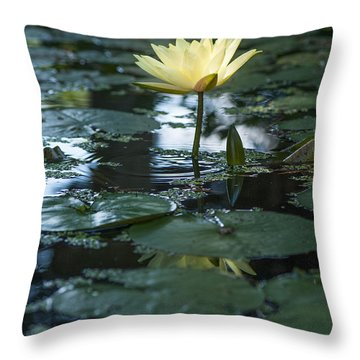 Yellow Lilly Tranquility Throw Pillow