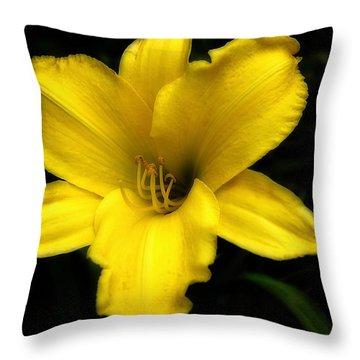 Yellow Lily 2015  Throw Pillow