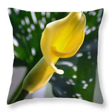 Throw Pillow featuring the photograph Yellow Mini Calla Lilies by Donna Bentley