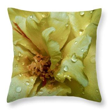Yellow Moss Rose 1 Throw Pillow by Karen Musick