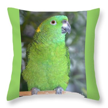 Throw Pillow featuring the photograph Yellow-naped Amazon by Debbie Stahre